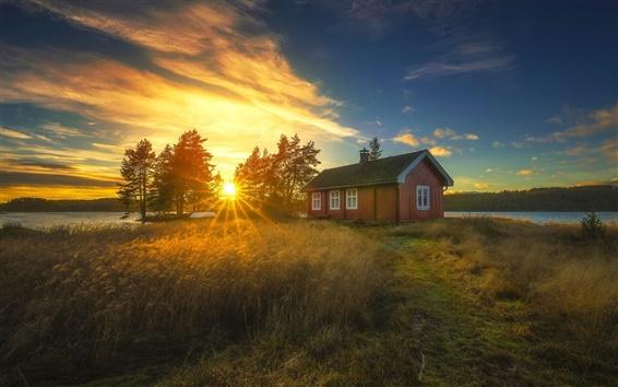 Fondos de pantalla Ringerike, Noruega, puesta del sol, casa, cañas, árboles, río