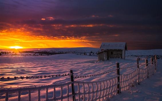 Fond d'écran Neige épaisse, à l'aube, l'hiver, le gel, la cabane