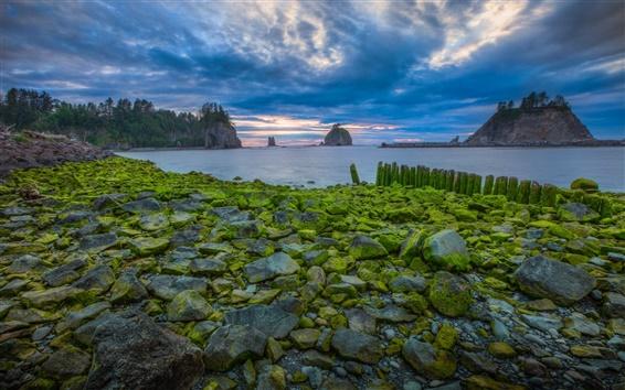 Papéis de Parede EUA, Parque nacional, nuvens, pedras, pôr do sol, mar, musgo