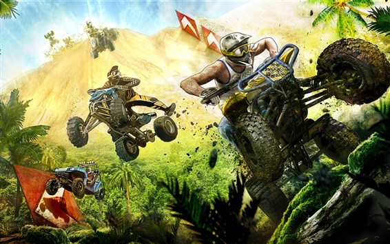 Wallpaper Mad Riders, PC game