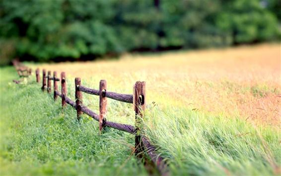 Fond d'écran Nature paysage, barrière, herbe, fond flou
