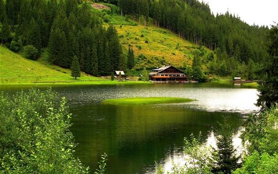 Обои Природа пейзажи, горы, деревья, река, дом, зеленый