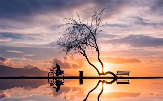 배경 화면 일몰, 나무, 여성, 자전거, 실루엣, 물 반사