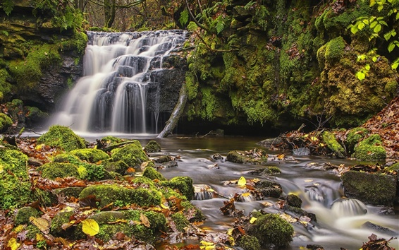 Wallpaper Todmorden, West Yorkshire, England, waterfall, moss, leaves, autumn
