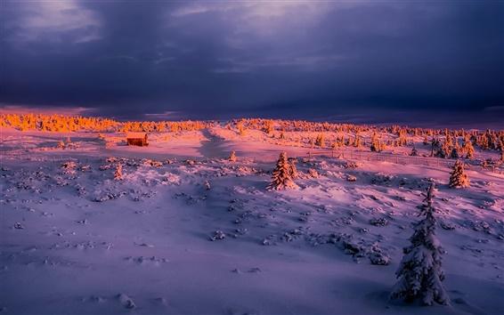 Wallpaper Winter, morning, sunrise, snow, house, trees