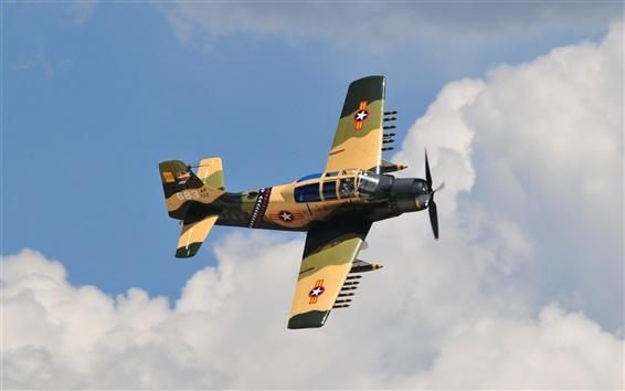 Wallpaper A-1E Skyraider fighter, attack, sky