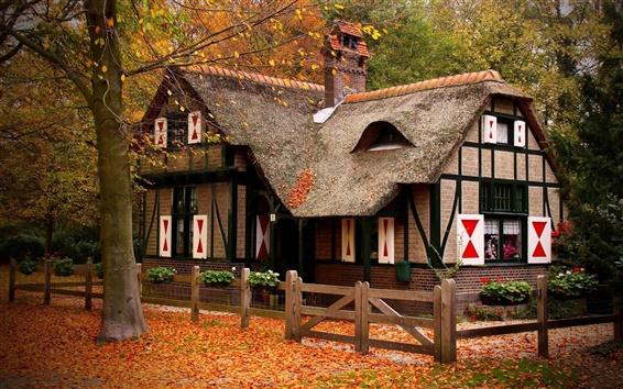 壁紙 秋、家、木、紅葉、フェンス