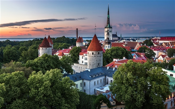 Wallpaper Estonia, Tallinn, city, houses, trees, dusk, summer
