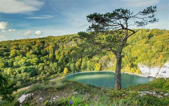 Обои Германия, Бавария, красивый пейзаж, деревья, река