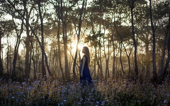 Wallpaper Girl in the forest, morning, sunrise, trees, flowers
