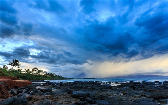 Papéis de Parede Hawaii, costa, nuvens, tempestade, palmeiras, pedras, crepúsculo