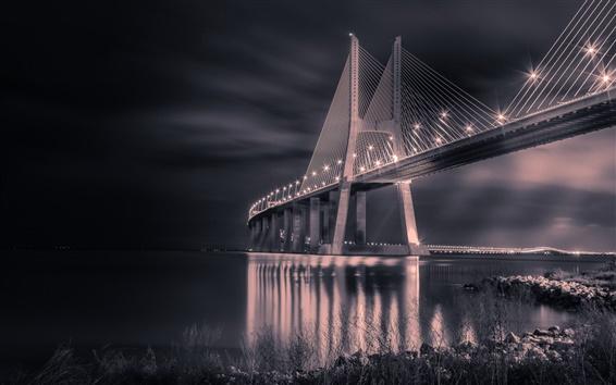 壁紙 ポルトガル、橋、夜、ライト