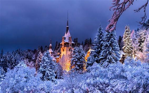 Wallpaper Romania, Sinaia, Peles castle, winter, trees, snow, night, lights