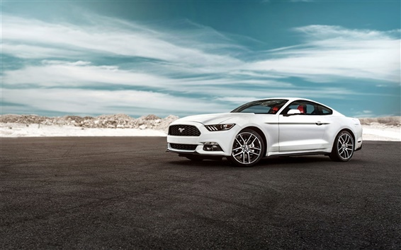 Wallpaper 2015 Ford Mustang GT white car