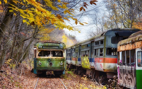 壁紙 放棄された鉄道駅、ペンシルベニア州、木、秋