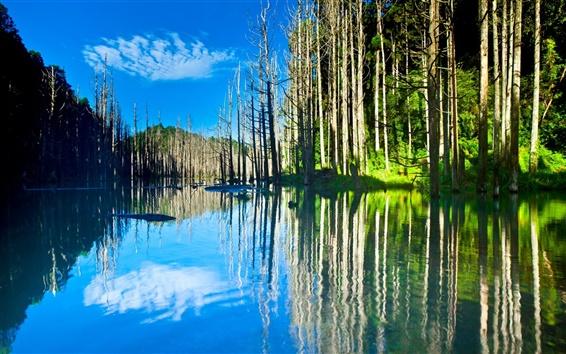 Wallpaper Beautiful nature scenery, lake, trees, water reflection, sun