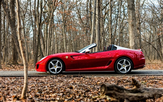 Обои Ferrari красный суперкар в лесу