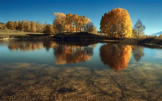 Обои Озеро, деревья, осень, вода отражение