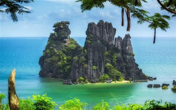 Обои Новая Каледония, Тихий океан, остров, деревья, скалы, пляж, море