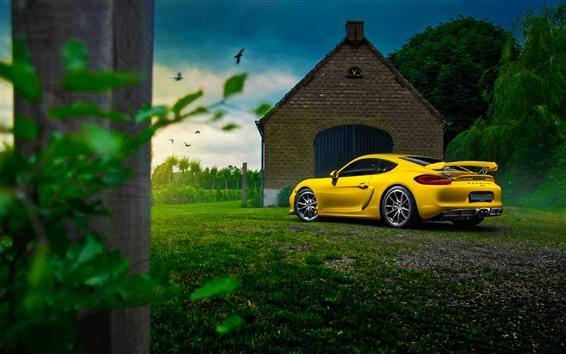 Wallpaper Porsche Cayman GT4 yellow supercar, house, tree, grass