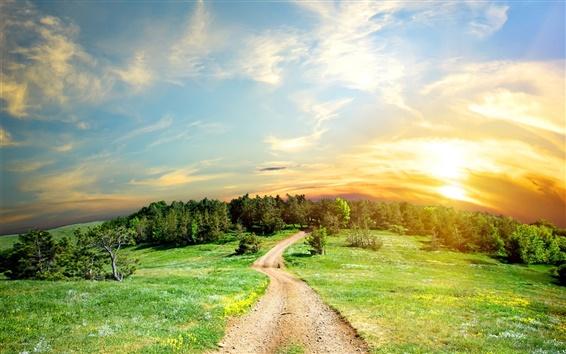 Papéis de Parede Estrada, árvores, grama, céu, nuvens, pôr do sol