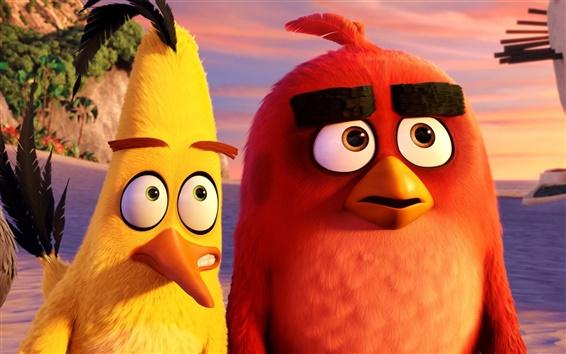Wallpaper Angry Birds cartoon movie