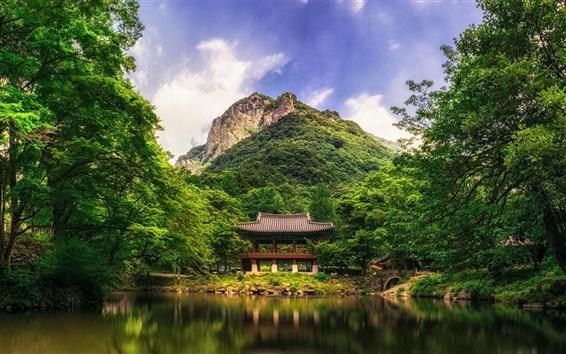 Papéis de Parede Park, árvores, montanha, lago, caramanchão, China