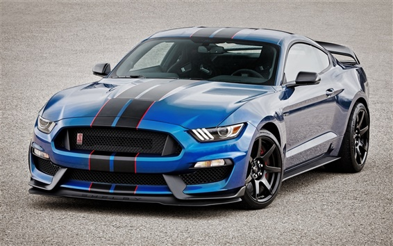 Wallpaper Shelby Ford Mustang GT350R blue car front view