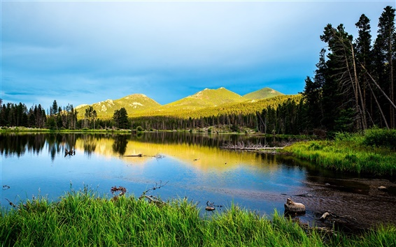 Wallpaper Sprague Lake, Rocky Mountain National Park, Colorado, USA, forest