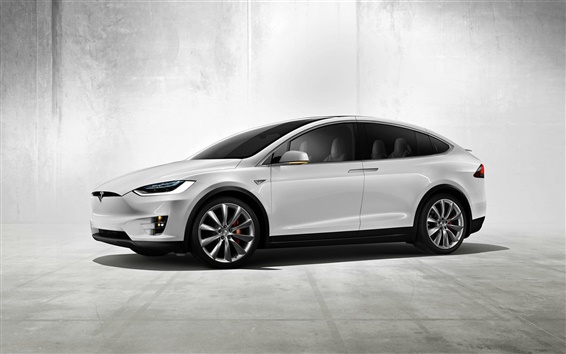 fonds d 39 cran tesla model x concept de voiture lectrique hd image. Black Bedroom Furniture Sets. Home Design Ideas