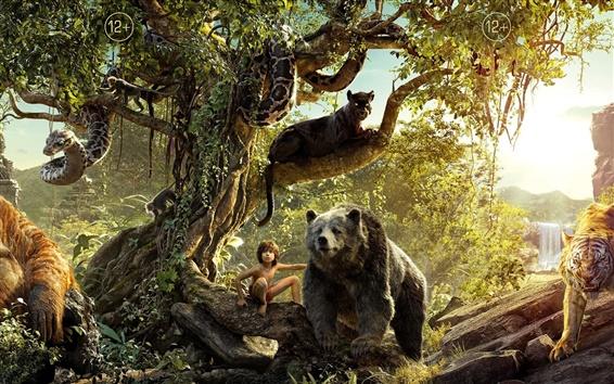 Fondos de pantalla El libro de la selva, la película de Disney 2016