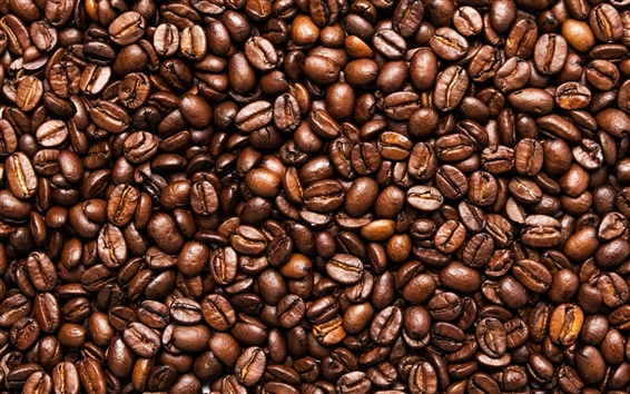 Wallpaper Toasted coffee beans, seeds