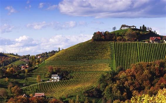 Fondos de pantalla Austria, Burgenland, montañas, casas, campos