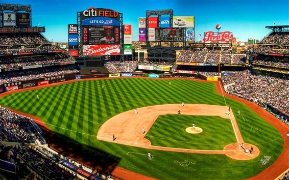 Wallpaper Baseball field, New York, USA