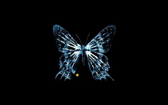 Papéis de Parede imagens criativas, raios-x, borboleta, ossos, franja