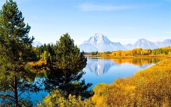 Wallpaper Grand Teton National Park, Wyoming, USA, trees, lake, mountains