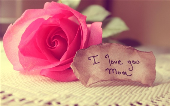 Wallpaper I Love You, mom, Happy Mother's Day, rose