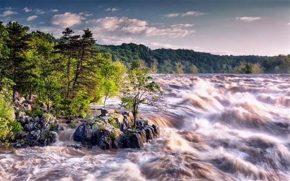 Fondos de pantalla Río, corriente, árboles, piedras