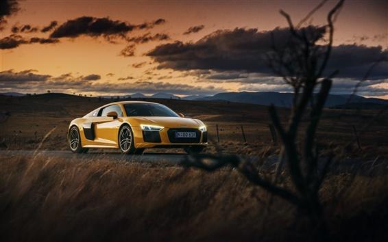 Wallpaper Audi R8 V10 yellow car at sunset