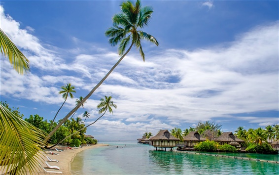 Обои Пляж, море, курорт, дом, пальмы, тропические