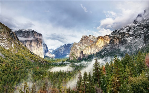 Wallpaper Beautiful Yosemite Park, mountains, forest, trees, fog, clouds, USA