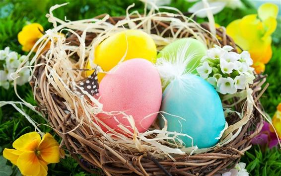 Wallpaper Easter Eggs, colorful, nest, flowers, spring