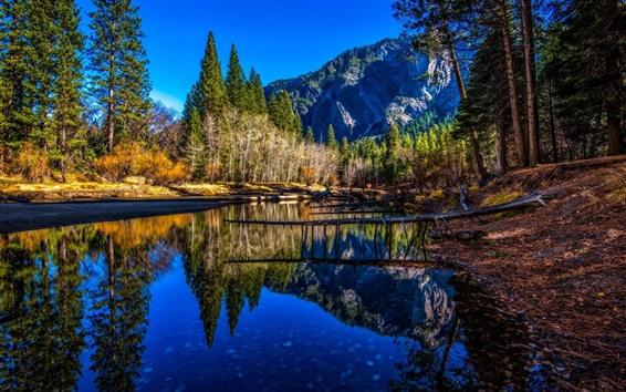 壁纸 河,树,山,水中的倒影,优胜美地国家公园,美国