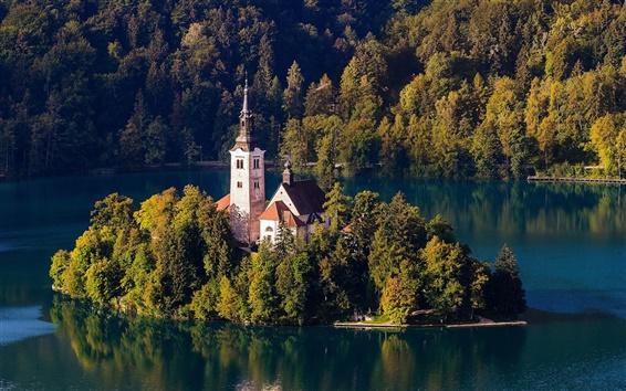 Обои Словения, озеро Блед, церковь, остров, деревья