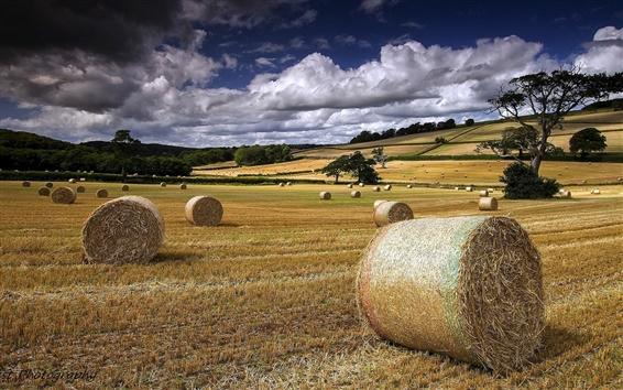 Fond d'écran Été, champ de la ferme, du foin, des nuages