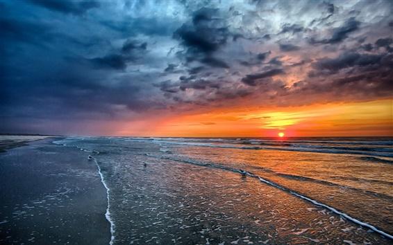 Обои Закат, море, пляж, побережье, волны, птицы