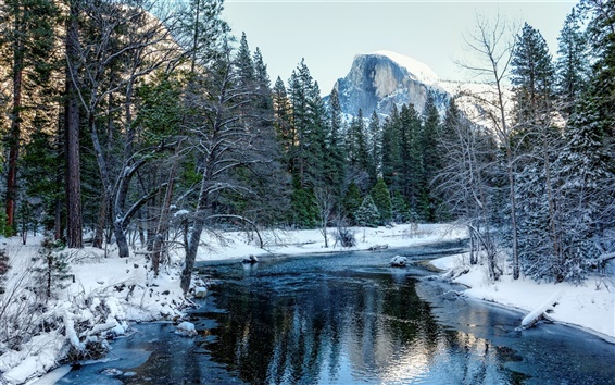 Wallpaper Yosemite National Park, California, USA, snow, forest, trees, mountains, river