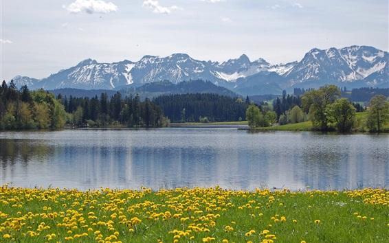 Обои Альпы, Schwaltenweiher, Германия, горы, деревья, озеро