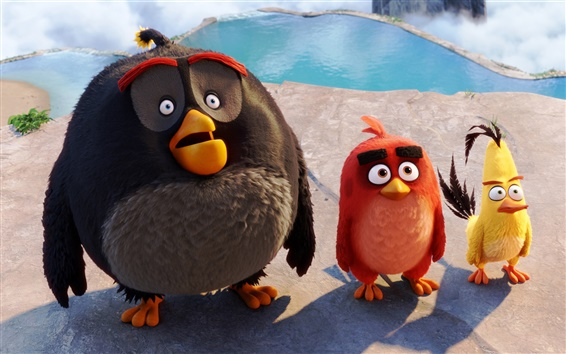 Wallpaper Angry Birds, 2016 movie HD