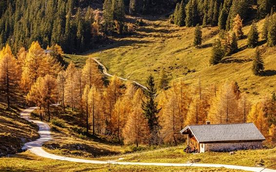 Обои Бавария, Германия, красивая осень, дорога, дом, лес, горы